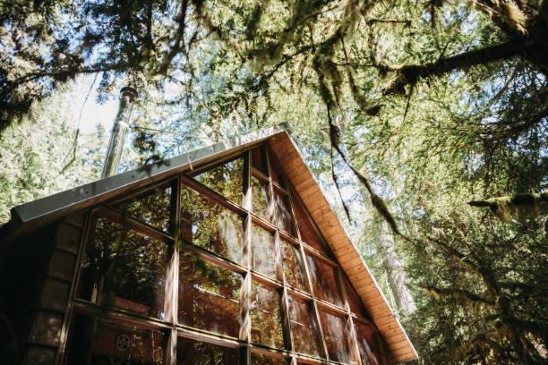 Optez pour les nouvelles tendances  des maisons en bois pour des travaux immobiliers bien réussis